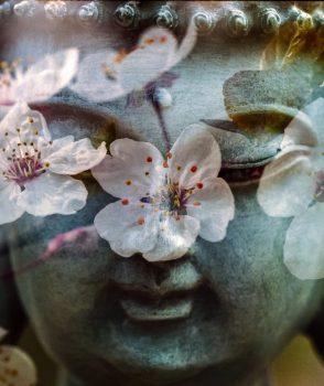 Psicosomatica e Mindfulness